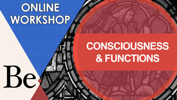 Consciousness and Functions